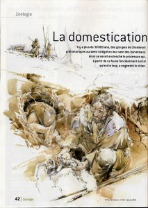 PLS1DomesticationLoupPourLaScienceJanvier2013